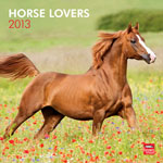 Horse Lovers 2013 Wall Calendar